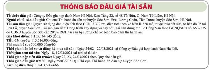 Ngày 25/3/2021, đấu giá quyền sử dụng đất tại huyện Sóc Sơn, Hà Nội ảnh 1