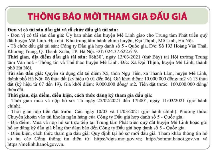 Ngày 13/3/2021, đấu giá quyền sử dụng đất tại huyện Mê Linh, Hà Nội ảnh 1