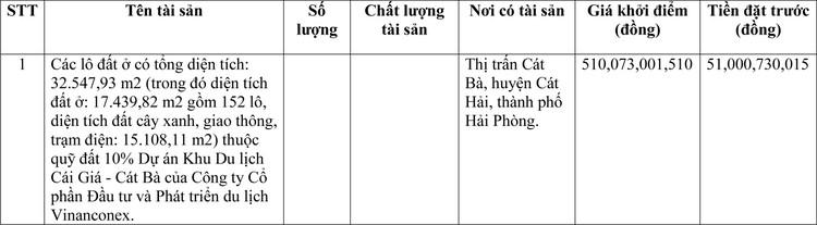Ngày 22/3/2021, đấu giá quyền sử dụng đất tại huyện Cát Hải, thành phố Hải Phòng ảnh 1