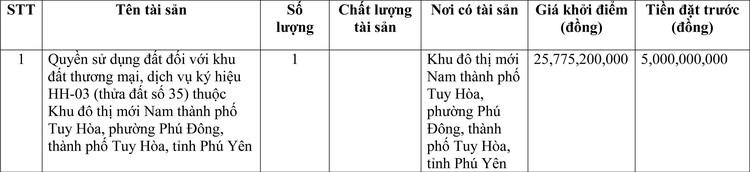 Ngày 25/3/2021, đấu giá quyền sử dụng đất tại thành phố Tuy Hòa, tỉnh Phú Yên ảnh 1