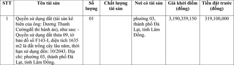 Ngày 9/4/2021, đấu giá quyền sử dụng đất tại thành phố Đà Lạt, tỉnh Lâm Đồng ảnh 1