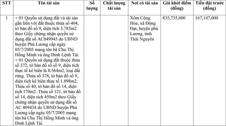 Ngày 22/3/2021, đấu giá quyền sử dụng đất tại huyện Phú Lương, tỉnh Thái Nguyên ảnh 1