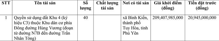 Ngày 1/4/2021, đấu giá quyền sử dụng đất tại thành phố Tuy Hòa, tỉnh Phú Yên ảnh 1