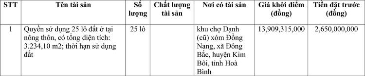 Ngày 23/3/2021, đấu giá quyền sử dụng đất tại huyện Kim Bôi, tỉnh Hoà Bình ảnh 1