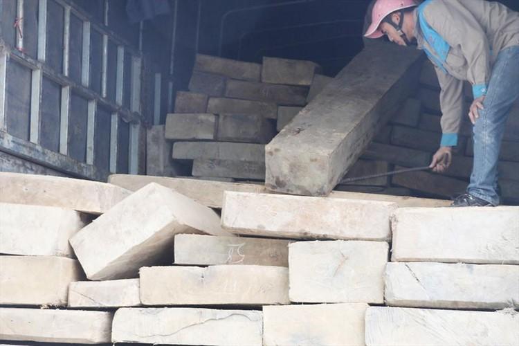 Bắt giữ xe tải chở gỗ không rõ nguồn gốc ảnh 1