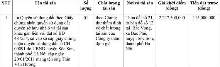 Ngày 9/3/2021, đấu giá quyền sử dụng đất tại huyện Sóc Sơn, thành phố Hà Nội ảnh 1