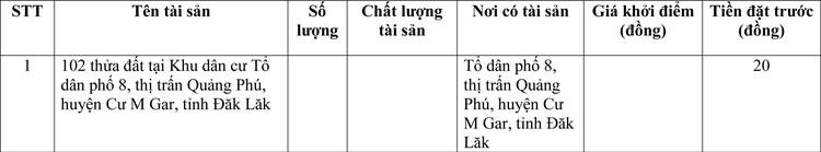 Ngày 25/3/2021, đấu giá quyền sử dụng đất tại huyện Cư M'Gar, tỉnh Đắk Lắk ảnh 1