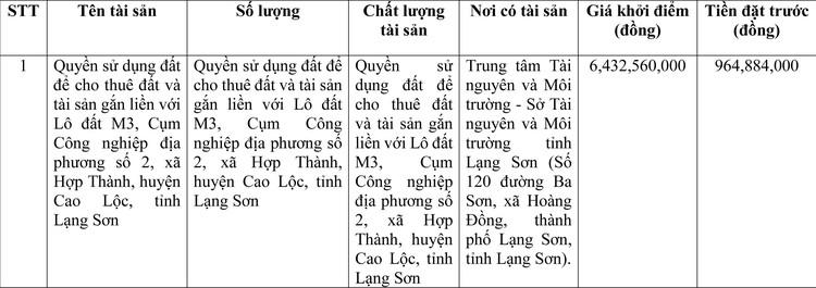 Ngày 31/3/2021, đấu giá quyền sử dụng đất tại thành phố Lạng Sơn, tỉnh Lạng Sơn ảnh 1