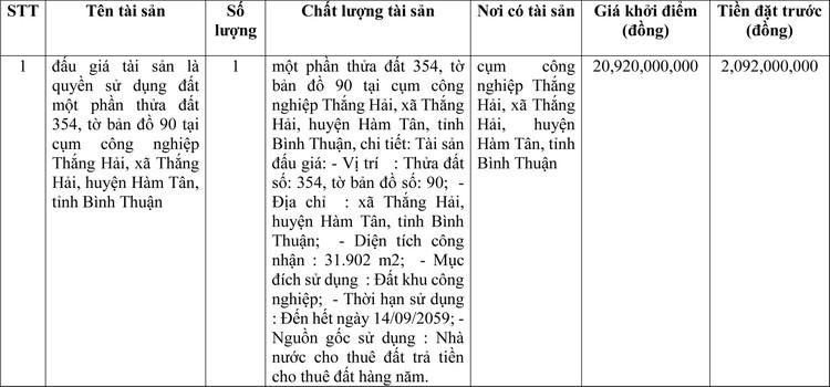 Ngày 20/3/2021, đấu giá quyền sử dụng đất tại huyện Hàm Tân, tỉnh Bình Thuận ảnh 1