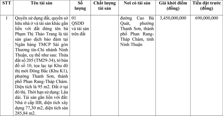 Ngày 2/4/2021, đấu giá quyền sử dụng đất tại thành phố Phan Rang-Tháp Chàm, tỉnh Ninh Thuận ảnh 1