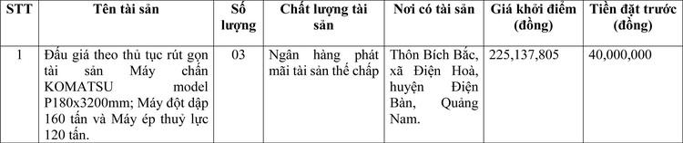 Ngày 18/3/2021, đấu giá máy móc thiết bị tại thành phố Đà Nẵng ảnh 1