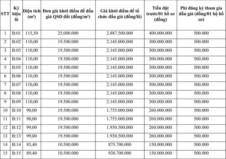 Ngày 1/4/2021, đấu giá quyền sử dụng đất tại huyện Đông Sơn, tỉnh Thanh Hóa ảnh 1