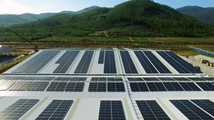 12 trang trại bò sữa 4.0 của Vinamilk đang được triển khai dùng năng lượng mặt trời ảnh 5