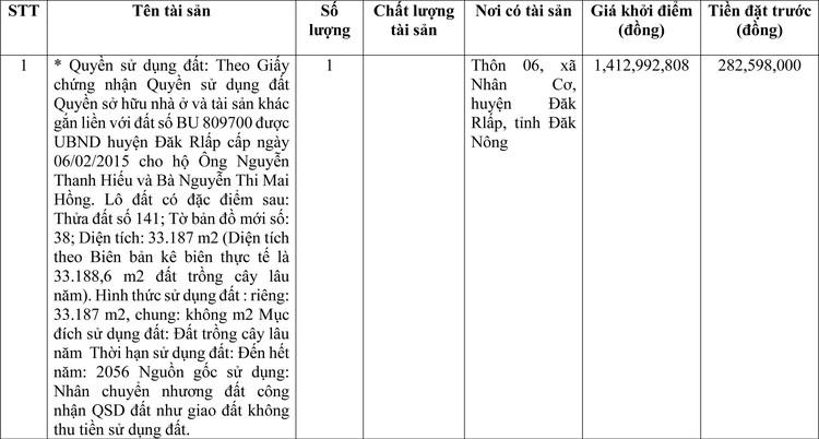 Ngày 2/4/2021, đấu giá quyền sử dụng đất tại huyện ĐắkRlấp, tỉnh Đắk Nông ảnh 1