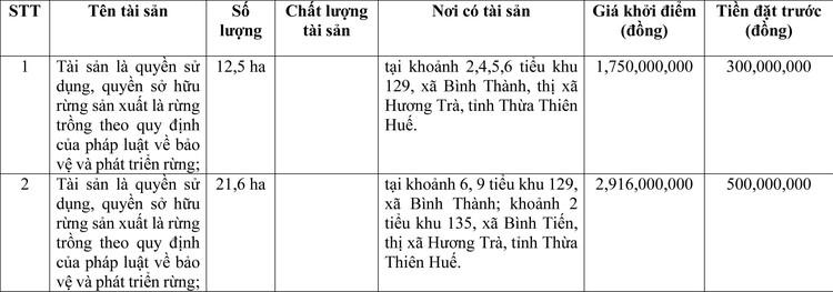 Ngày 20/3/2021, đấu giá quyền sử dụng đất tại thị xã Hương Trà, tỉnh Thừa Thiên Huế ảnh 1
