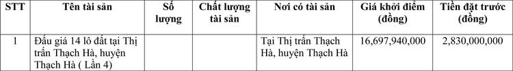 Ngày 31/3/2021, đấu giá quyền sử dụng đất tại huyện Thạch Hà, tỉnh Hà Tĩnh ảnh 1