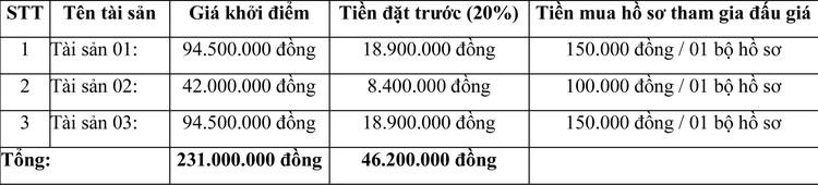 Ngày 5/4/2021, đấu giá lô xe ô tô tại tỉnh Bình Phước ảnh 3