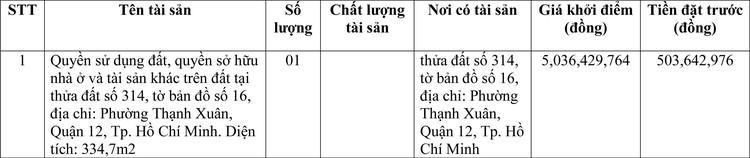 Ngày 9/4/2021, đấu giá quyền sử dụng đất tại Quận 12, TP. Hồ Chí Minh ảnh 1