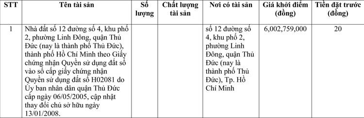 Ngày 16/4/2021, đấu giá quyền sử dụng đất tại thành phố Thủ Đức, TP. Hồ Chí Minh ảnh 1