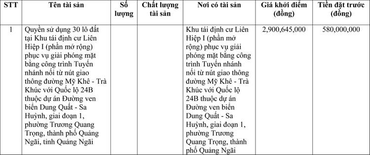 Ngày 16/4/2021, đấu giá quyền sử dụng đất tại thành phố Quảng Ngãi, tỉnh Quảng Ngãi ảnh 1