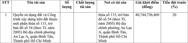 Ngày 22/4/2021, đấu giá quyền sử dụng đất tại quận Bình Tân, thành phố Hồ Chí Minh ảnh 1