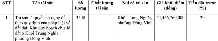 Ngày 15/4/2021, đấu giá quyền sử dụng đất tại thành phố Vinh, tỉnh Nghệ An ảnh 1