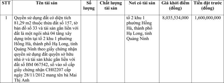 Ngày 16/4/2021, đấu giá quyền sử dụng đất tại thành phố Hạ Long, tỉnh Quảng Ninh ảnh 1
