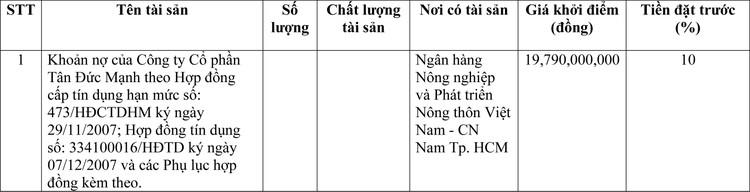 Ngày 23/4/2021, đấu giá khoản nợ của Công ty Cổ phần Tân Đức Mạnh tại Agribank Chi nhánh Nam Thành phố Hồ Chí Minh ảnh 1