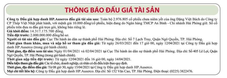Ngày 15/4/2021, đấu giá 2.976.805 cổ phiếu Công ty CP thép Việt Nhật ảnh 1