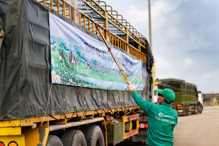 Thêm 2.100 con bò sữa từ Mỹ đã gia nhập đàn tại trang trại Vinamilk Quảng Ngãi ảnh 3