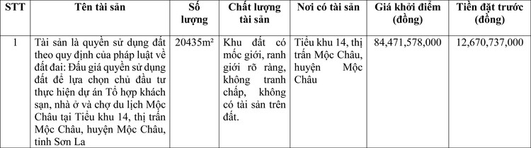 Ngày 22/4/2021, đấu giá quyền sử dụng đất tại huyện Mộc Châu, tỉnh Sơn La ảnh 1