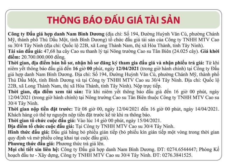 Ngày 15/4/2021, đấu giá 47,68 ha cây cao su thanh lý tại tỉnh Tây Ninh ảnh 1