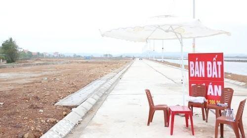 Vân Đồn (Quảng Ninh): Cấm cán bộ buôn bán, môi giới và tiếp tay cho đầu cơ đất đai ảnh 2