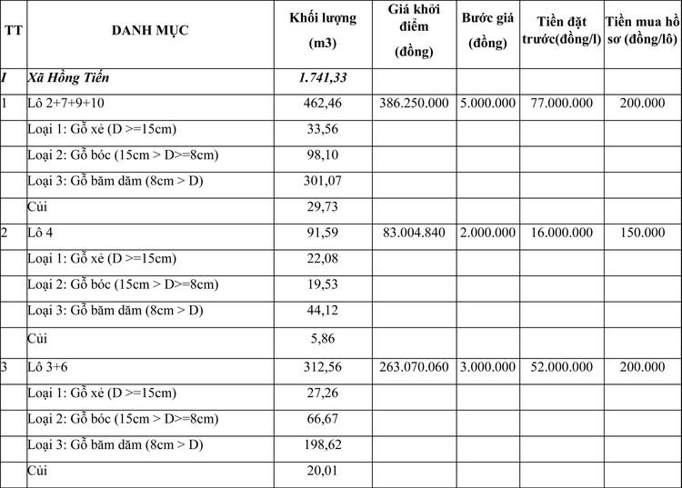Ngày 29/4/2021, đấu giá gỗ keo lai và keo hạt tại tỉnh Thái Nguyên ảnh 1