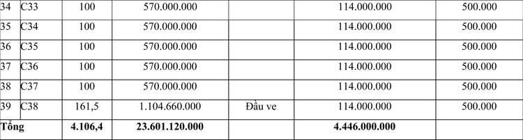Ngày 27/4/2021, đấu giá quyền sử dụng đất tại huyện Triệu Sơn, tỉnh Thanh Hóa ảnh 3