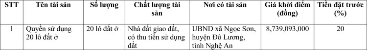 Ngày 19/4/2021, đấu giá quyền sử dụng đất tại huyện Đô Lương, tỉnh Nghệ An ảnh 1