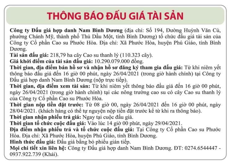 Ngày 29/4/2021, đấu giá 110.323 cây cao su thanh lý tại tỉnh Bình Dương ảnh 1