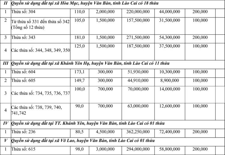 Ngày 7/5/2021, đấu giá quyền sử dụng đất tại huyện Văn Bàn, tỉnh Lào Cai ảnh 2
