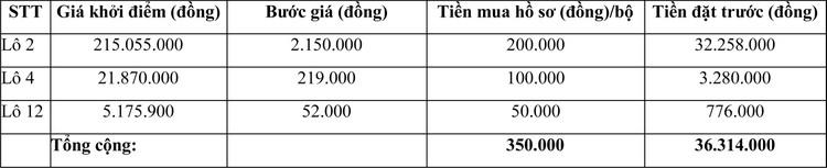 Ngày 29/4/2021, đấu giá máy móc thiết bị tại tỉnh Ninh Thuận ảnh 2