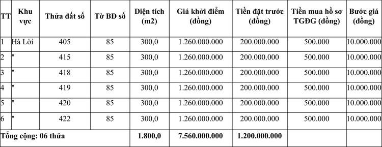 Ngày 7/5/2021, đấu giá quyền sử dụng đất tại huyện Bố Trạch, tỉnh Quảng Bình ảnh 1