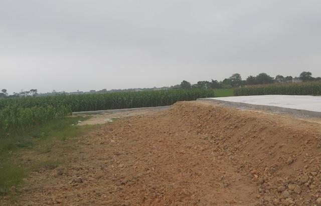 Sắp có tiền tỷ từ vụ đấu giá đất rúng động vùng quê, chính quyền vẫn lo ảnh 4