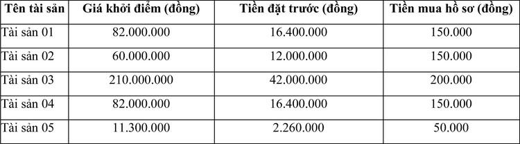 Ngày 11/5/2021, đấu giá lô xe ô tô tại tỉnh Long An ảnh 1
