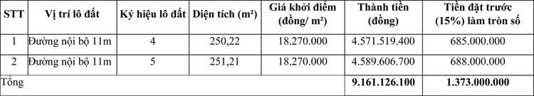 Ngày 8/5/2021, đấu giá quyền sử dụng đất tại huyện Ninh Hải, tỉnh Ninh Thuận ảnh 1
