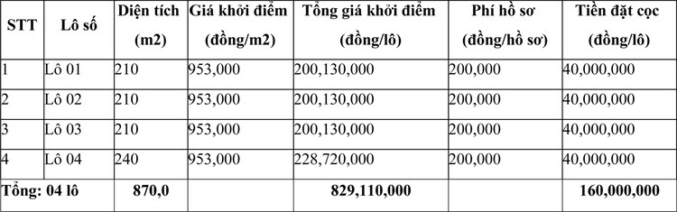 Ngày 14/5/2021, đấu giá quyền sử dụng đất tại huyện Cẩm Thủy, tỉnh Thanh Hóa ảnh 1