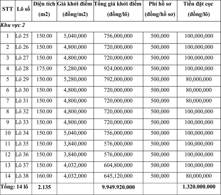 Ngày 13/5/2021, đấu giá quyền sử dụng đất tại thị xã Nghi Sơn, tỉnh Thanh Hóa ảnh 1