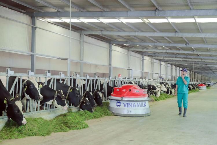 """Nhiều năm liền Vinamilk chắc """"ngôi quán quân"""" trong ngành hàng sữa nước ảnh 4"""