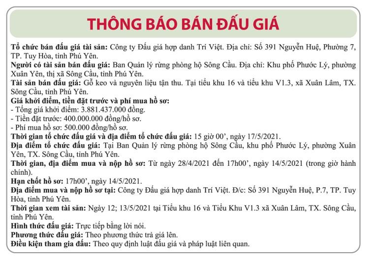 Ngày 17/5/2021, đấu giá gỗ Keo và nguyên liệu tận thu tại tỉnh Phú Yên ảnh 1