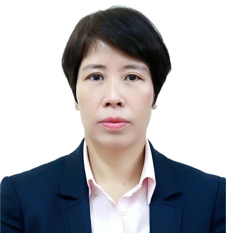 Bà Nguyễn Thị Bích Ngọc giữ chức Thứ trưởng Bộ Kế hoạch và Đầu tư ảnh 1