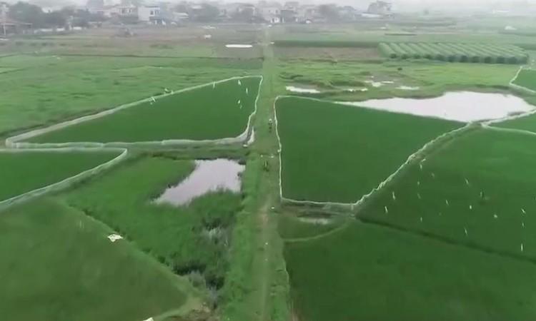 """Bộ TN-MT yêu cầu Thái Nguyên báo cáo việc đất chưa """"sạch"""" đã bán đấu giá ảnh 1"""