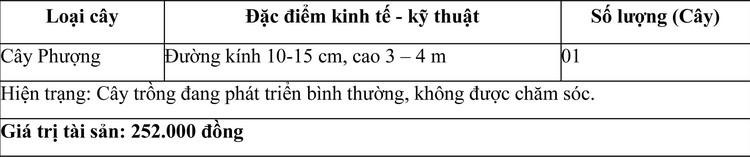 Ngày 4/6/2021, đấu giá quyền sử dụng đất thuê, công trình xây dựng và máy móc thiết bị tại huyện Ninh Sơn, tỉnh Ninh Thuận ảnh 7
